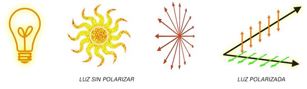 polarizada_y_no_polarizada