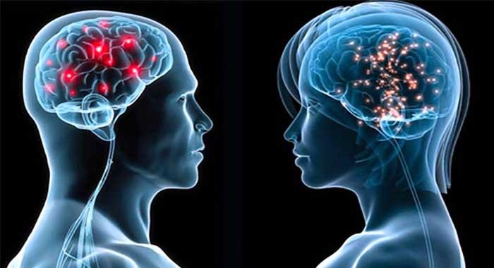 Biofotones, interacciones mente-cuerpo y beneficios de la meditación - image actividad-cerebral-diferenciada-hombres-y-mujeres on https://equantum.org